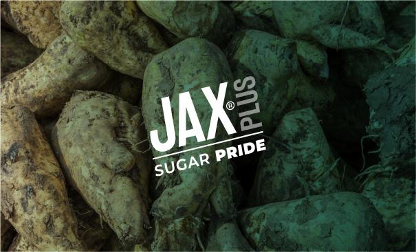 immagine-heallo-progetti-JAXplus-barbabietola