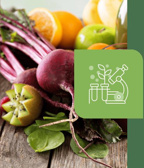 immagini-home-alimentazione-sana-nutraceutica-heallo